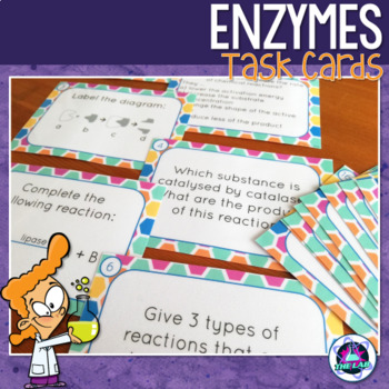Enzymes Task Cards