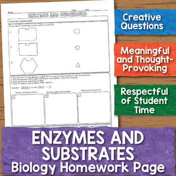 Enzymes and Substrates Biology Homework Worksheet