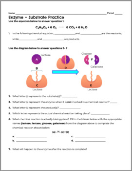 Enzymes and Substrates Review