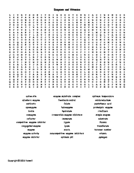Enzymes and Vitamins Vocabulary Word Search for Biological Chemistry