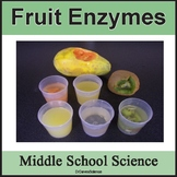 Enzymes in Fruits can Breakdown Proteins