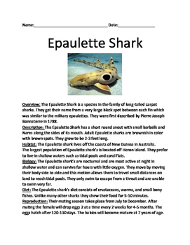 Epaulette Shark - lesson review article questions vocabulary facts