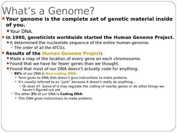 Biology Lecture Notes: Epigenetics