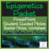 Epigenetics Packet: PowerPoint, Student Guided Notes, Worksheet, Activity