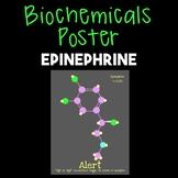 Epinephrine--Biochemical Poster