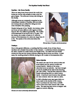 Equidae Fact Sheet