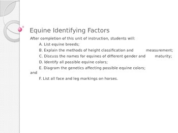 Equine Identifying Factors