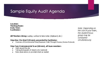 Equity Audit: Protocols and Procedures
