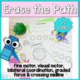 Erase the Path: Fine Motor Strength, Visual Motor and Visu