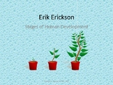 Erik Erickson's Stages of Human Development