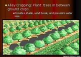 Erosion Lesson, Soil Conservation