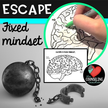 Escape from a Fixed Mindset Maze