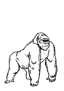 Escape of Marvin the Ape Word Search