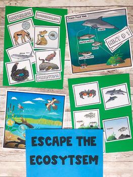Escape the Ecosystem:  A Digital AND Non-Digital Breakout