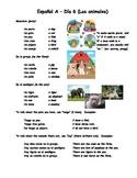 Espanol A y B Dia 6 Los animales WS