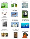 Español (Spanish) - National Geographic Kids - Non-fiction