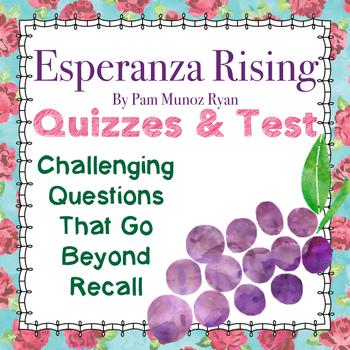 Esperanza: 70+pages CC-Aligned Quizzes/Assessments for Novel Study