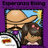 Esperanza Rising Novel Study: vocabulary, comprehension, w