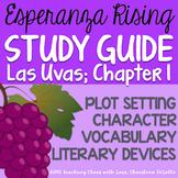 Esperanza Rising: Study Guide - Chapter 1 {Las Uvas}