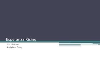Esperanza Rising End of Novel Character Analysis Essay