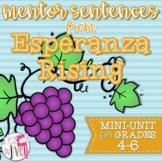 Esperanza Rising Mentor Sentences & Interactive Activities Mini-Unit (gr. 4-6)