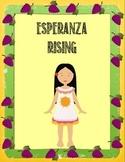 Esperanza Rising Motivating and Comprehensive Novel Unit