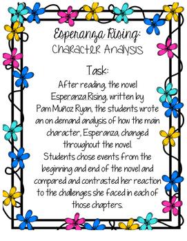 Esperanza Rising - Task Card (For Bulletin Boards)