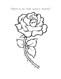 Esperanza Rising Theme Activity - There is No Rose Without Thorns