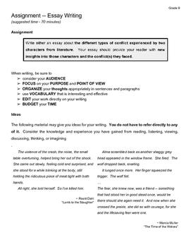 Essay Assignment - Grade 9