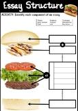 Essay Burger Structure Handout and Activity