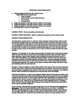 Essay Guidelines 2