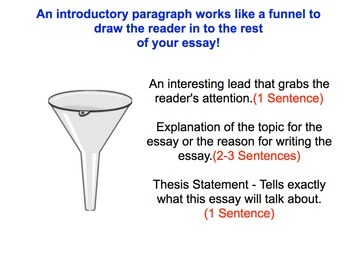 Essay Introductions and Conclusions