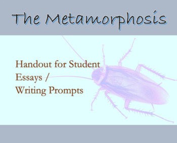 the metamorphosis by franz kafka teaching resources teachers pay   essay options for franz kafka s the metamorphosis student handout