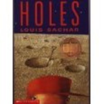essay on holes novel Holes essay back writer's block can be painful, but we'll help get you over the hump and build a great outline for your paper.