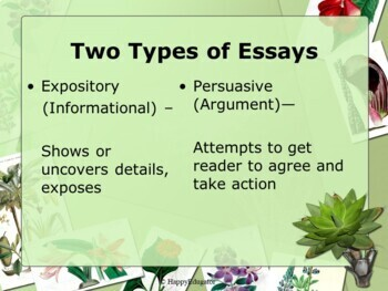 Essay Writing - Open-Ended Introductions PowerPoint