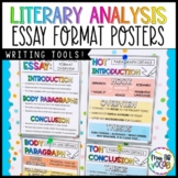 Essay Writing- Paragraph Posters!