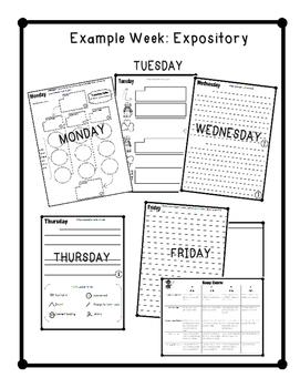 Essay of the Week