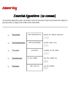 Essential Appositives Worksheet and Answer Key- NO COMMAS