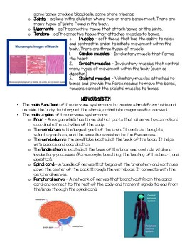 Essential Knowledge: Musculoskeletal and Nervous Systems