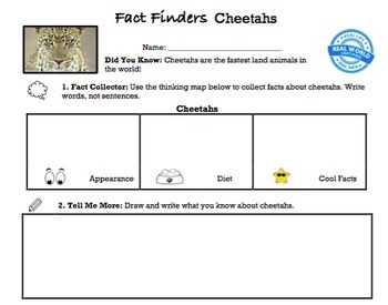 G1 Informative Writing - 'Fact Finders' Essentials Bundle