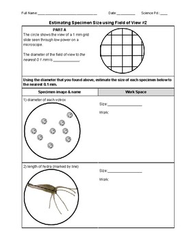 Field Of View Microscope Worksheets & Teaching Resources | TpT