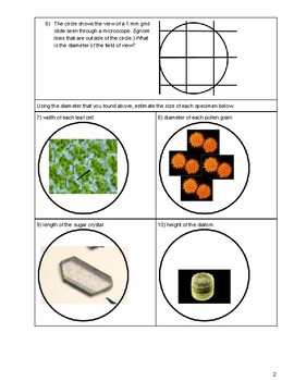 Estimating Specimen Size using Diameter of the Field of View (Microscope Skill)