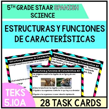 Estructuras y Funciones de Caractersticas- Animal Adaptaciones TEKS 5.10A