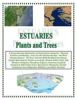 Water: Estuaries of the United States: Plants and Trees (Fusion of Biology)