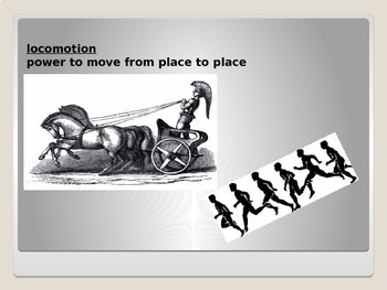 Etymology PowerPoint Mob and Mot (to move)