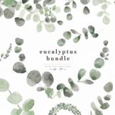 Eucalyptus Wreath Floral Border Clipart for Classroom Decor Posters Handouts PNG