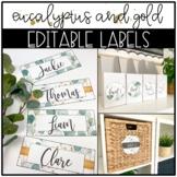 Eucalyptus and Gold Classroom Decor: EDITABLE LABELS