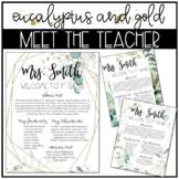 Eucalyptus and Gold Classroom Decor: EDITABLE MEET THE TEACHER