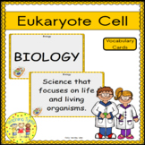 Eukaryote Cell Vocabulary Cards