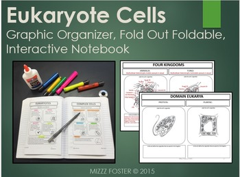 Eukaryote Cells: Graphic Organizer, Fold-Out Foldable, Int